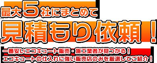 top_mitsumori_txt